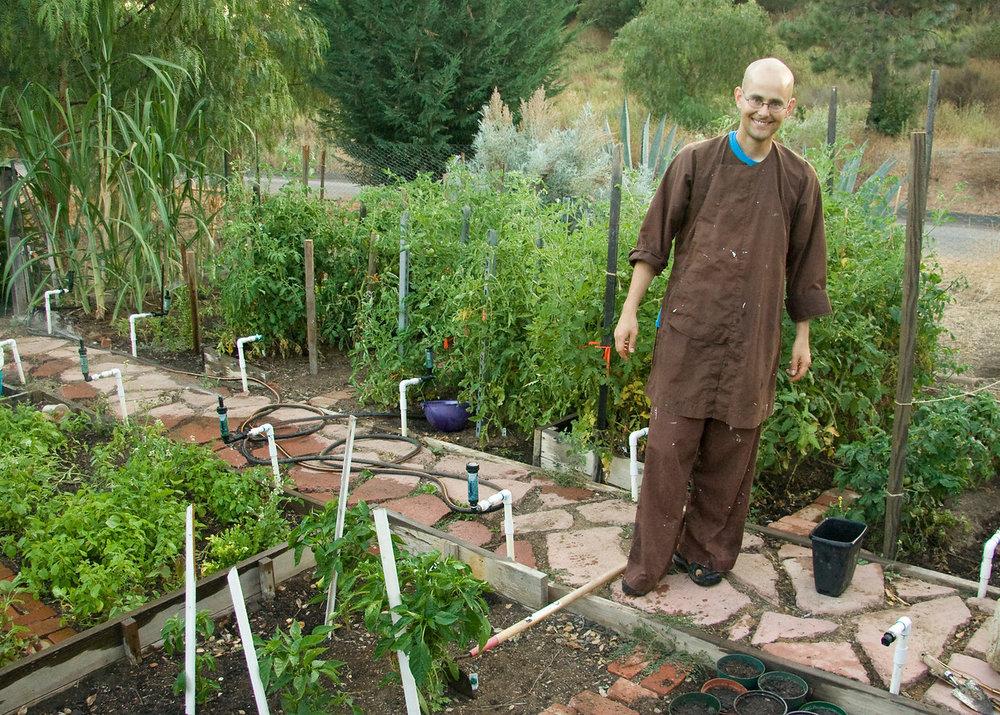 monk-garden.jpg