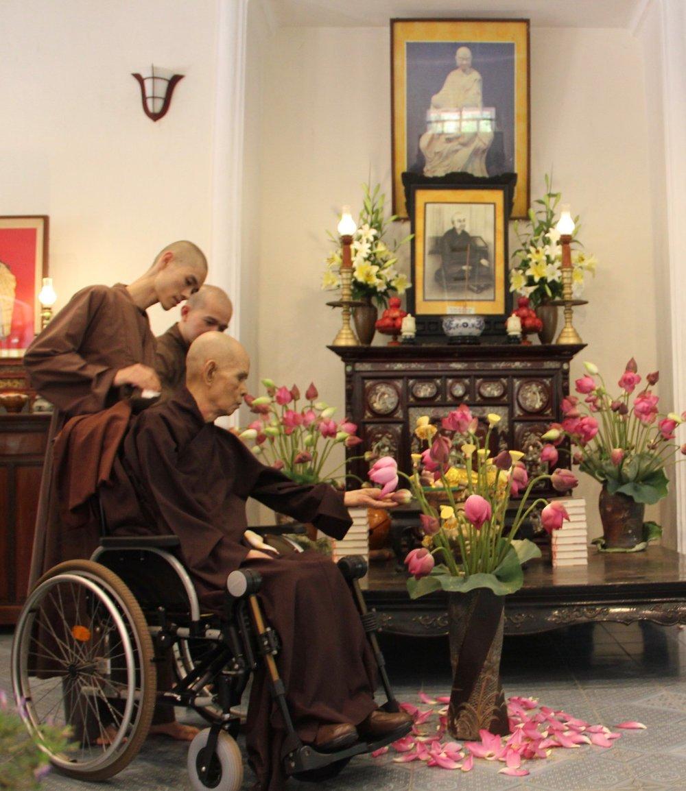 It is the start of the new lotus season in Vietnam.