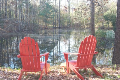Erickson's property in North Carolina by Mary Erickson