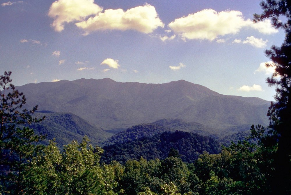 Great Smoky Mountain National Park and Cherokee National Forest. Photo courtesy of National Park Service