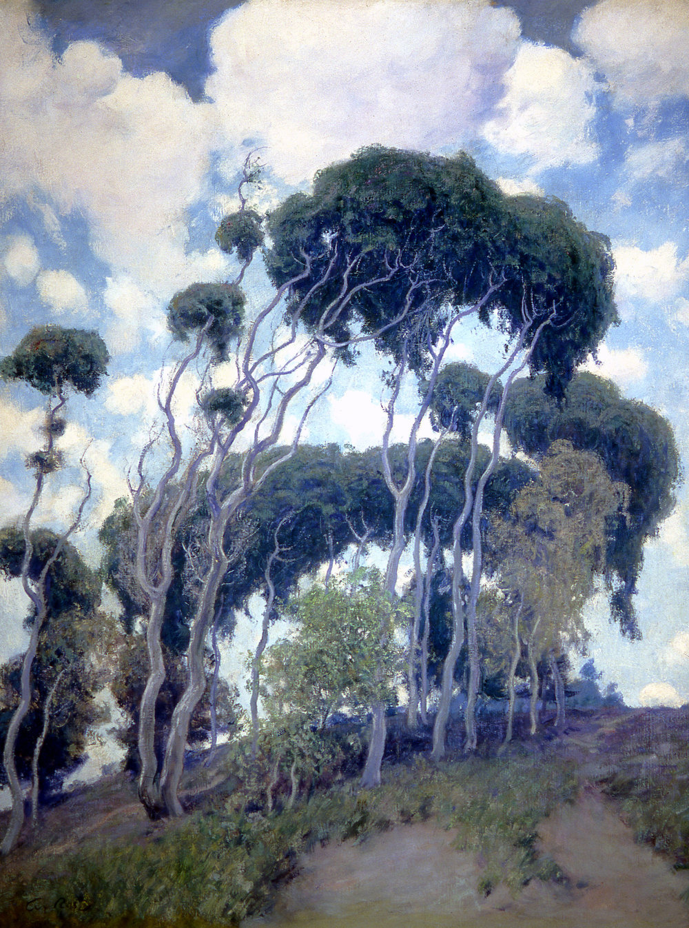 """Laguna Eucalyptus,"" by Guy Rose. Collection of the Irvine Museum"