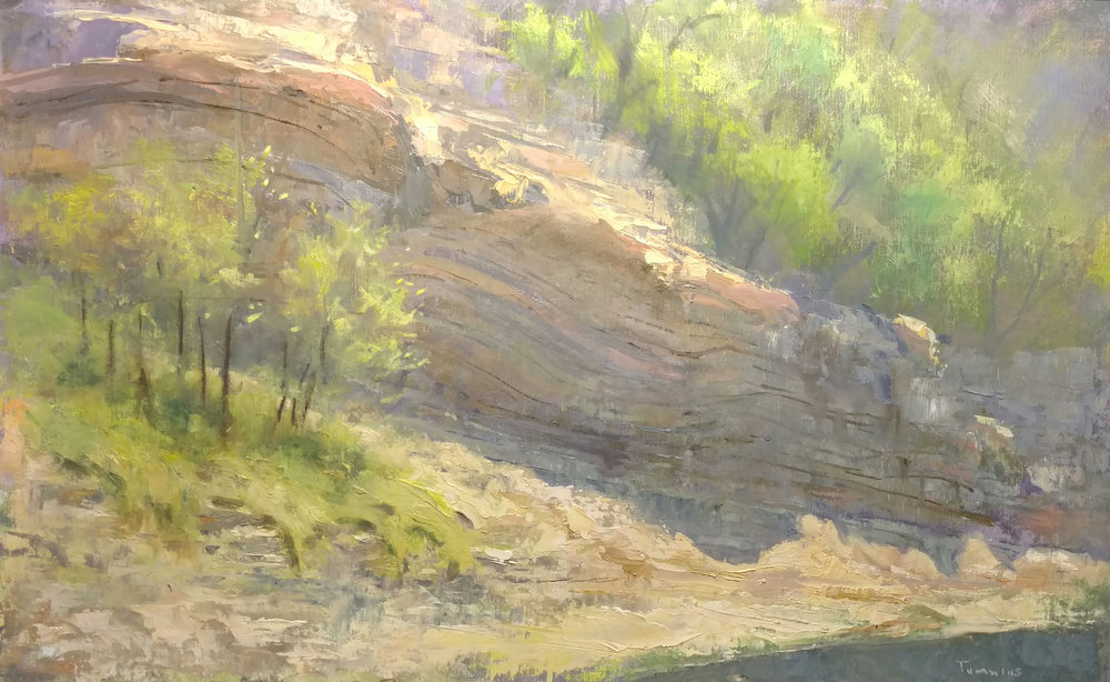 """Bellevue Bluffs,"" by Seth Tummins, oil"