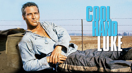 Remembering Paul Newman s Greatness As  Cool Hand Luke  Turns        Pinterest