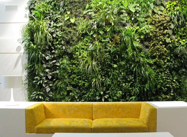 Feature Wall Vertical Garden