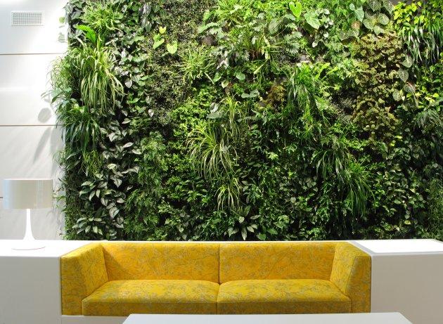 Feature Wall Vertical Garden