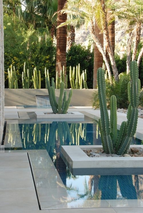 Wet Edge Pool with Planters