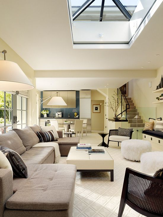 stylish living room with skylight