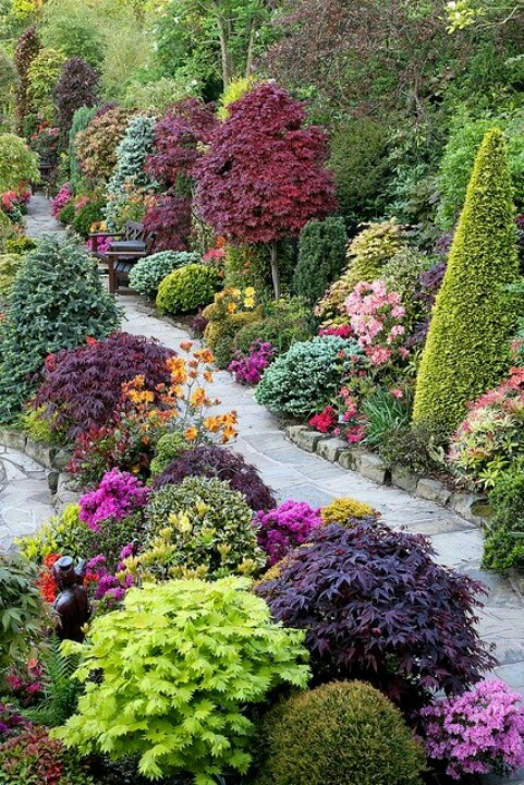 vibrant and sculptured garden