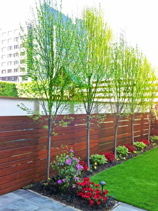 Wood Fence And Trim Side Trees