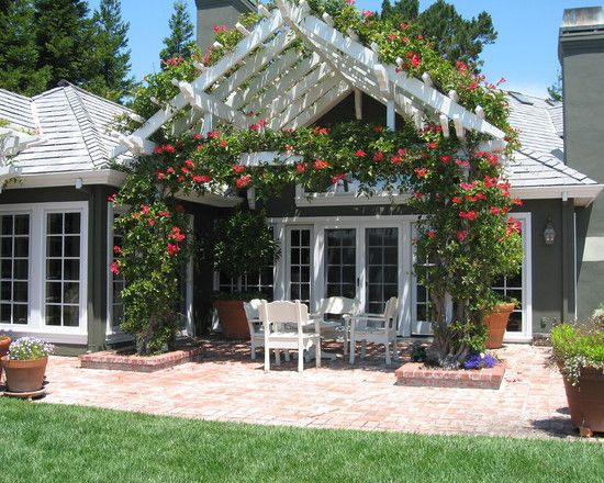 pitched patio pergola with flower creepers