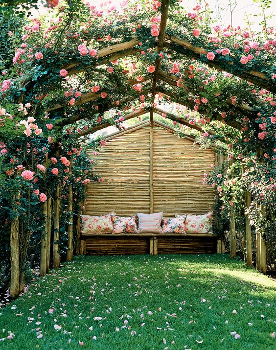 rustic pitched pergola with rose climbers