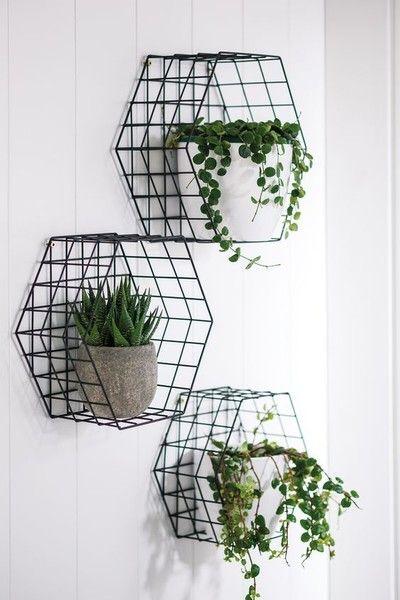 steel mesh planters