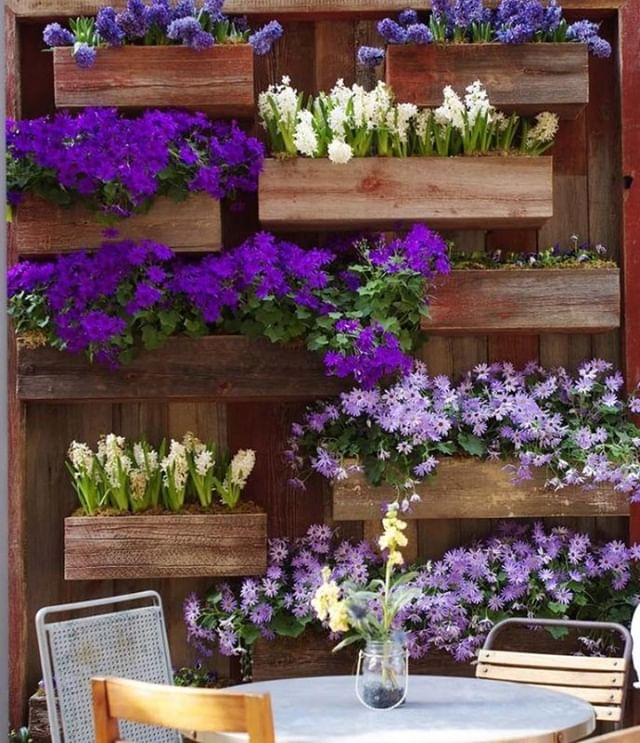 Don't let the lack of space stop you from creating floral garden beds. Vertical box gardens are popular throughout smaller backyard spaces. 🌼  #RenoGuide #Backyard #Landscaping #Outdoor #OutdoorDesign #Flowers #DesignInspo #Backyard #BackyardGoals #Goals