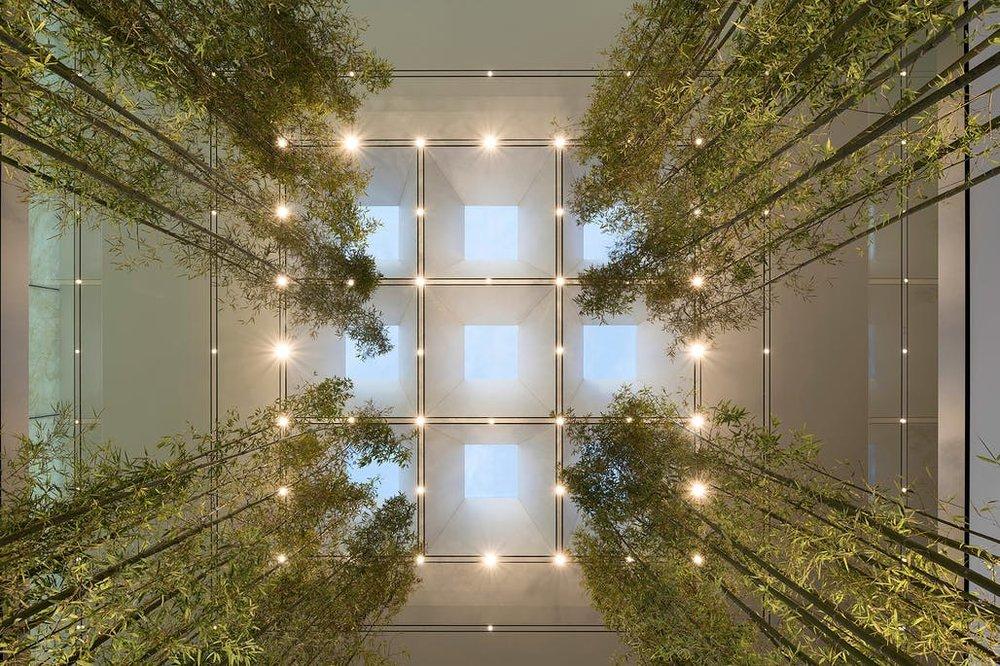 viventium-design-zac-kraemer-apple-macau-retail-experience-design-3.jpg