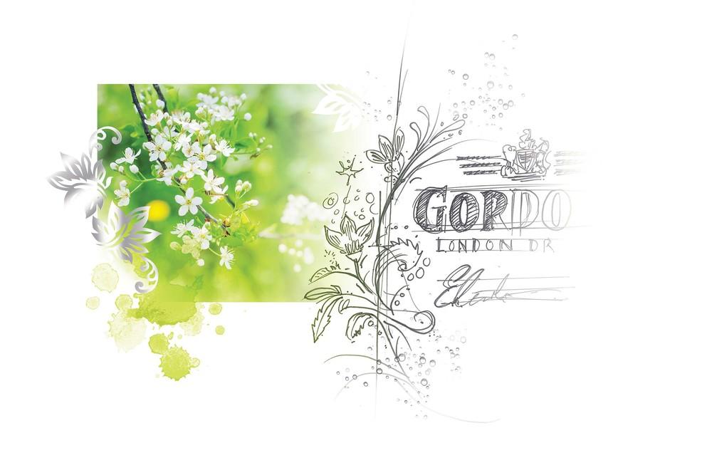 Diageo_Gordons Moodboard_150 dpi_RBG.jpg