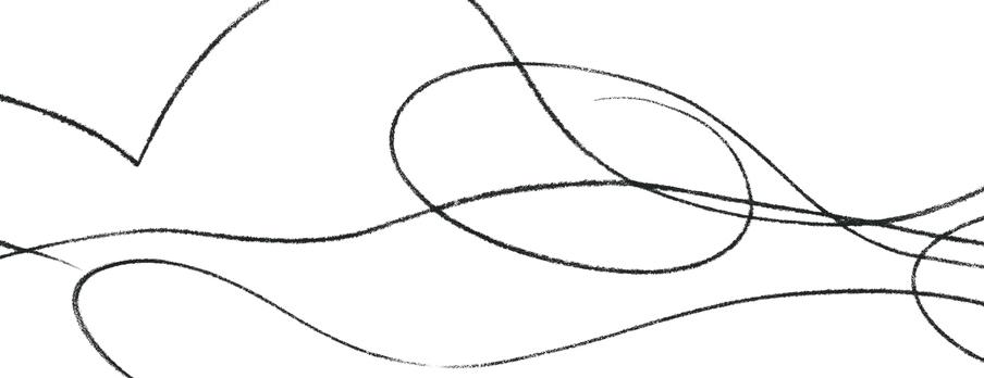 Illustration lines.jpg