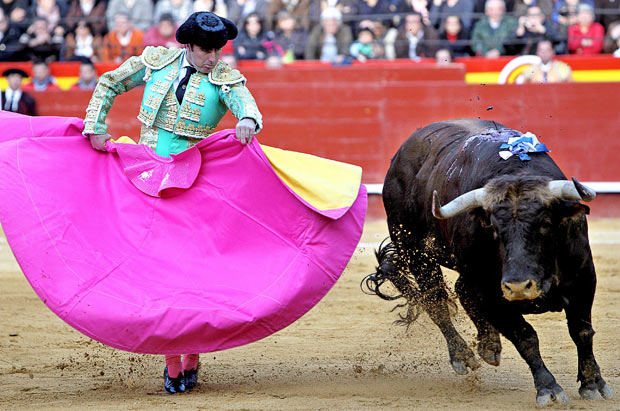 bullfighting_1597197i.jpg
