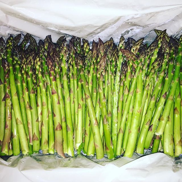 The spearmen of spring #asparagus #seasonsharvest #localfood #seasonalfood #bcfood #stinkypee #yycchefs #yycfood