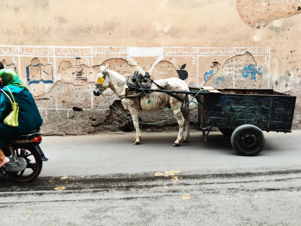 Moroccoblog-9.jpg