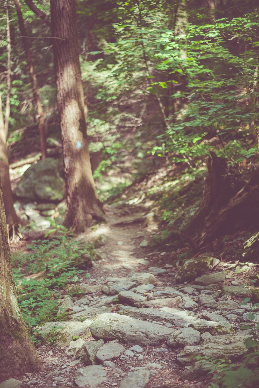 Massachusetts single track