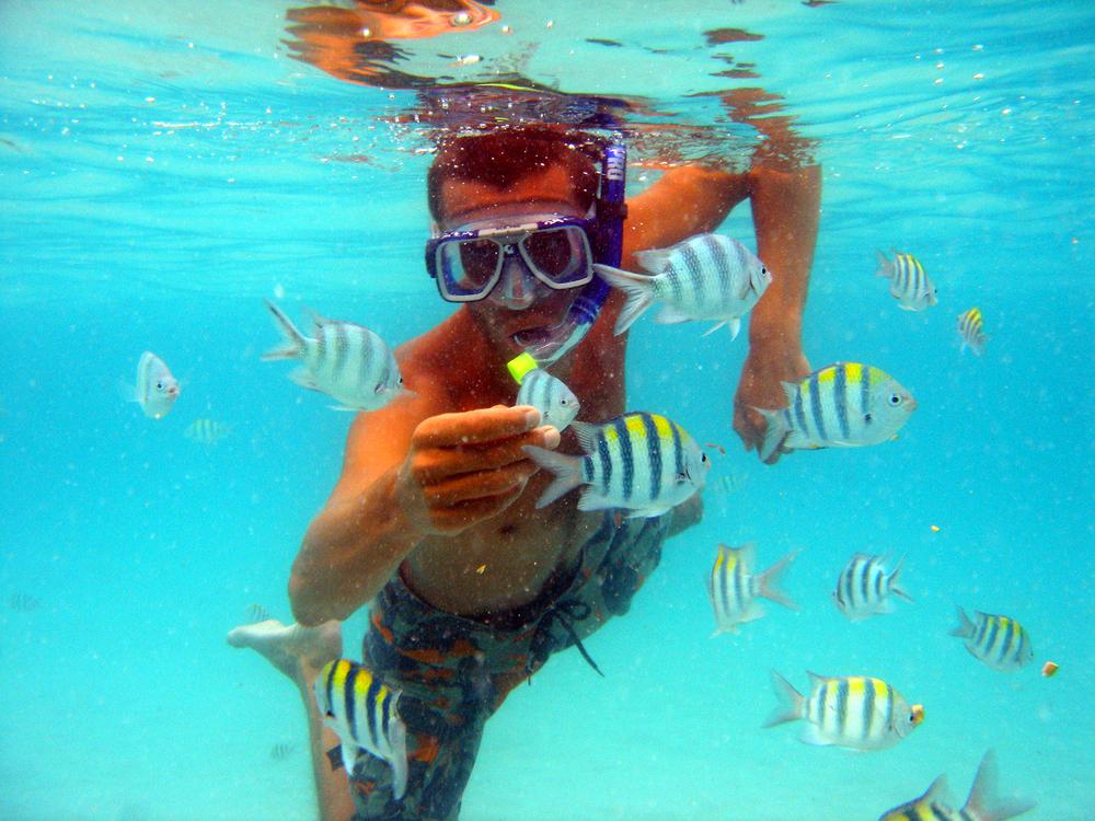 Gili island snorkeling