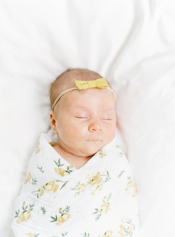 pittsburgh pennsylvania newborn family photographer anna laero photography -42.jpg