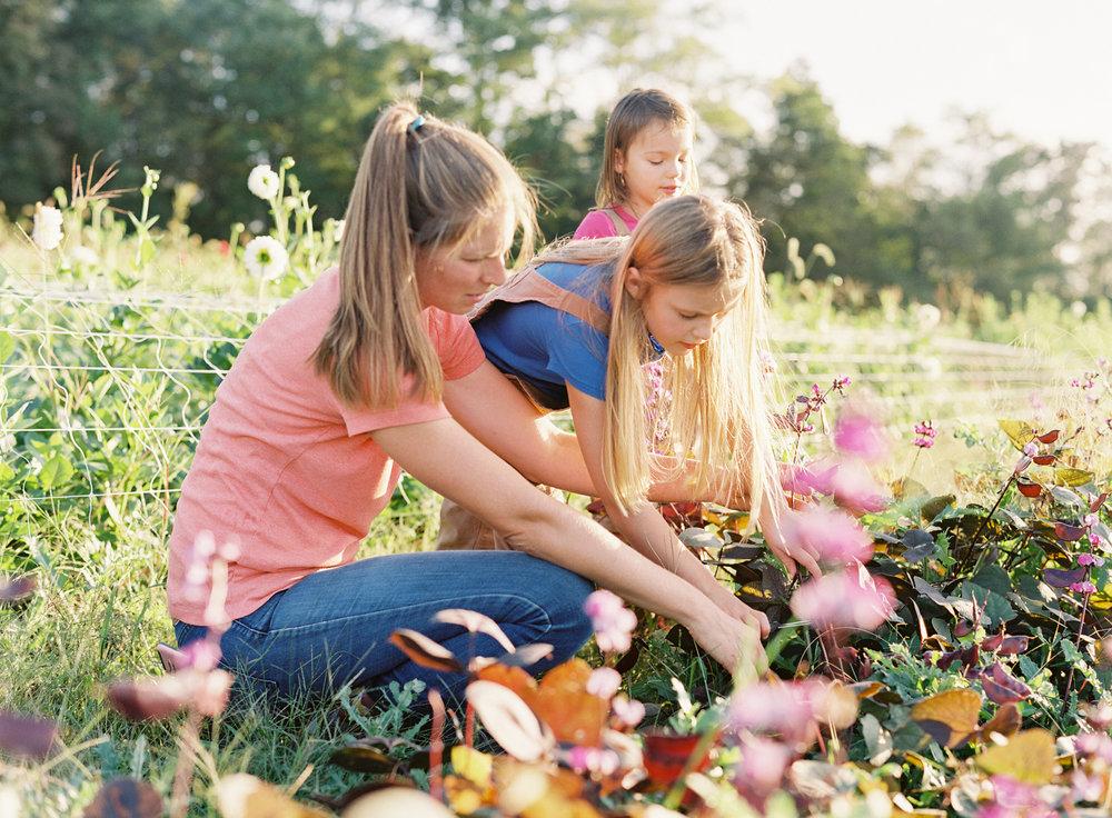 goosecreek-gardens-pittsburgh-florist-pittsburgh-family-photographer-anna-laero-photography-wedding-flowers-pittsburgh-pa-7.jpg