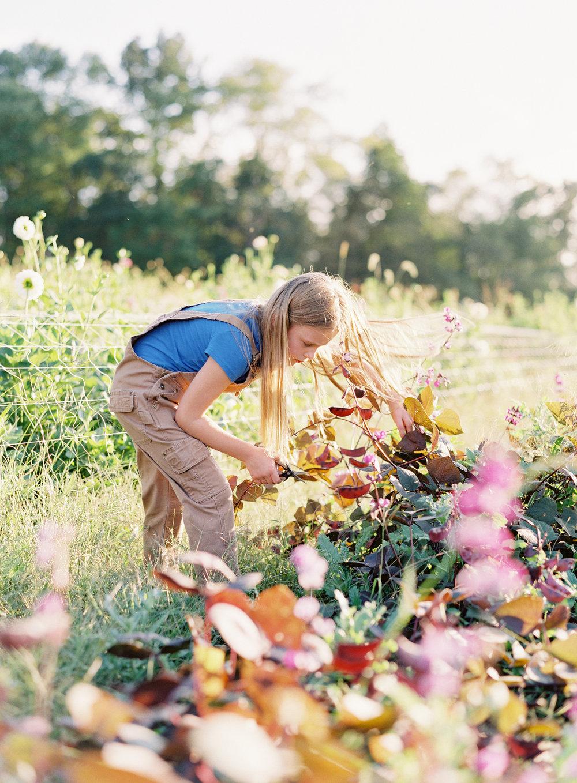 goosecreek-gardens-pittsburgh-florist-pittsburgh-family-photographer-anna-laero-photography-wedding-flowers-pittsburgh-pa-10.jpg