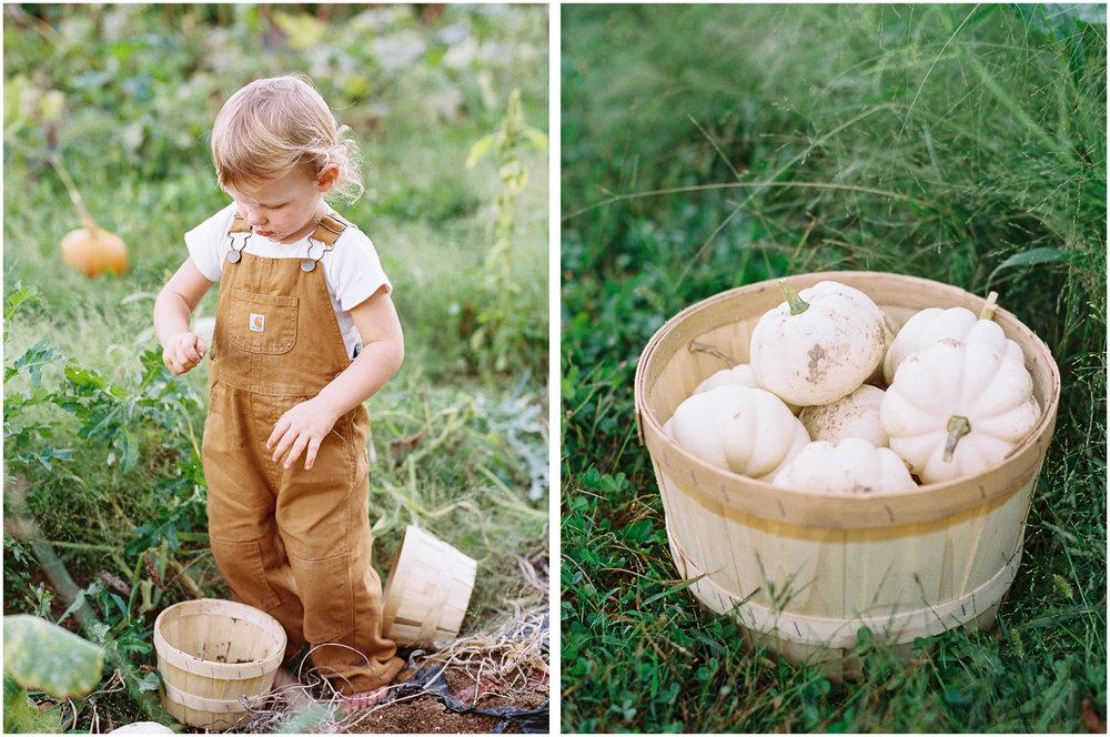 goosecreek-gardens-floral-company-pittsburgh-family-lifestyle-photographer-anna-laero-photography-22.jpg