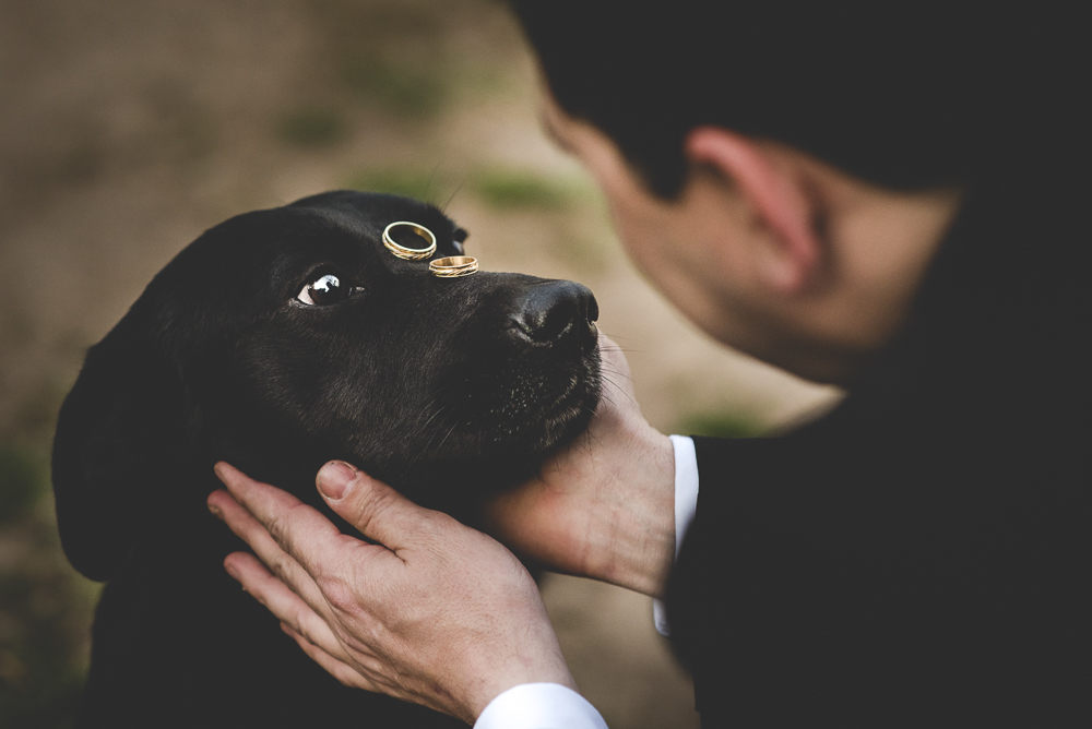 Ternura en fotografía de boda