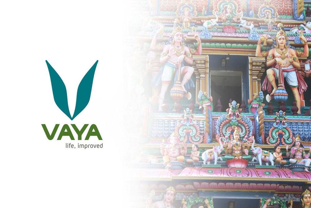 vaya visual brand header.jpg