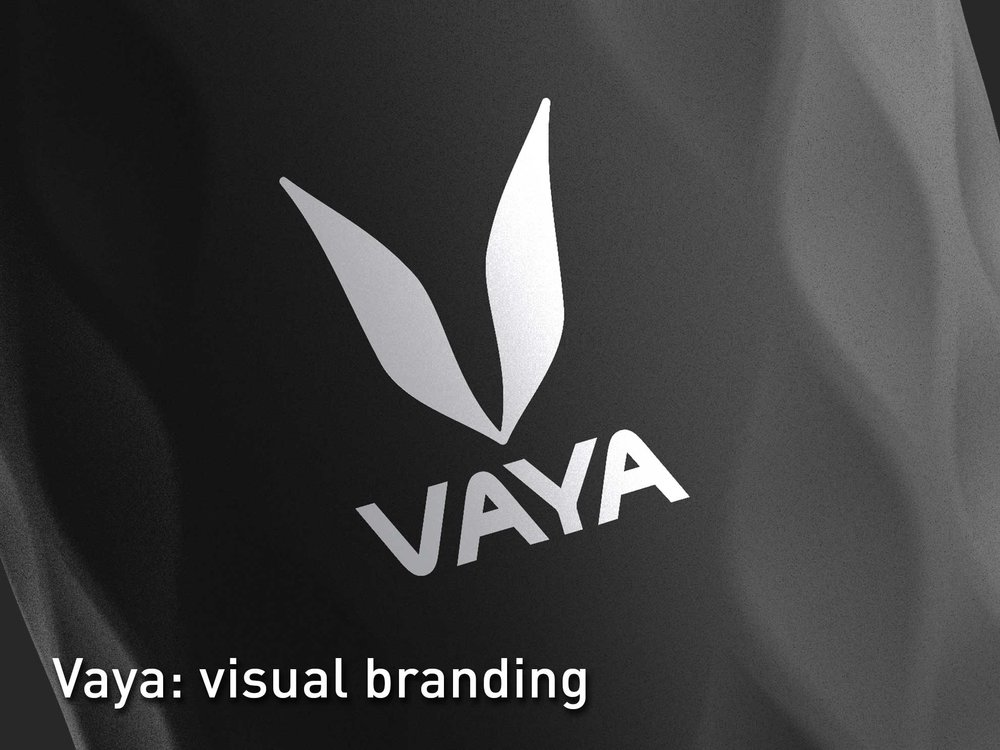 Vaya Logo Visual Brand