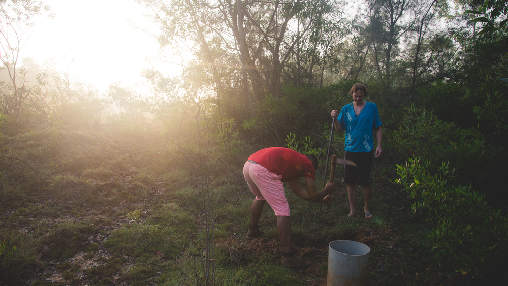 Paul and Shehaab digging pits to plant new trees.