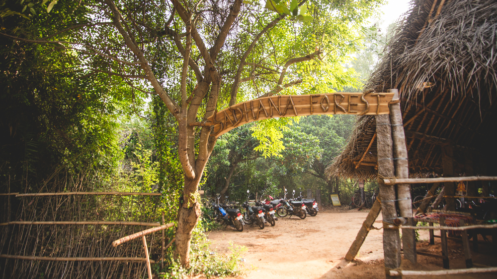 Entrance to the wonderland. Sadhana Forest is a water conservation and reforestation project near Pondicherry.