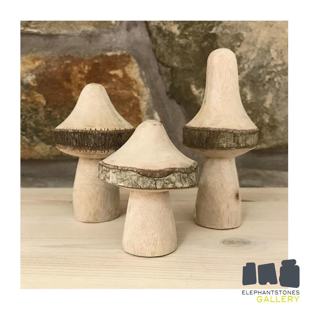 Social_Mushrooms.jpg