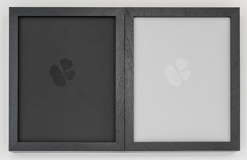 GlassBox-8.jpg