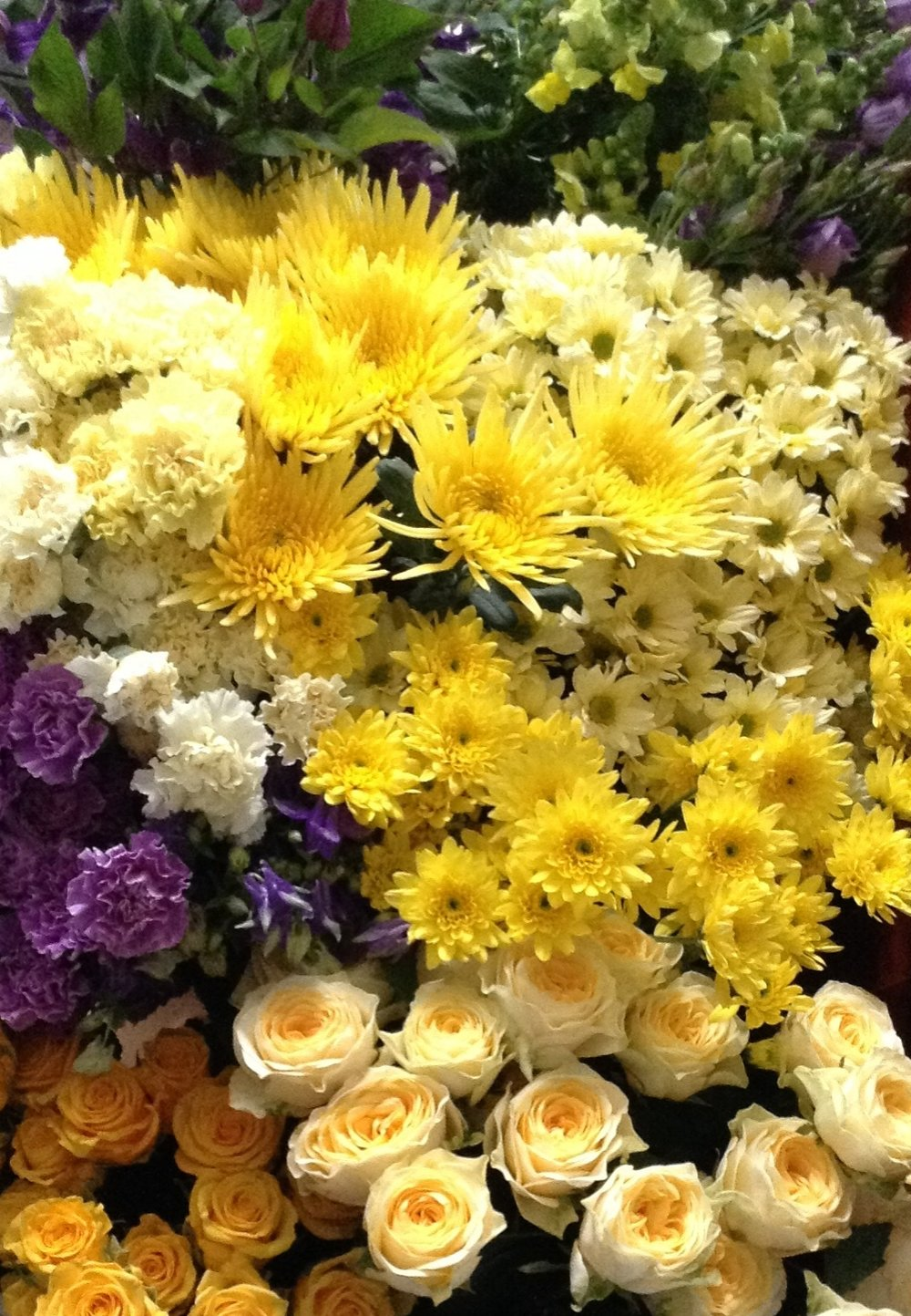 Learn to choose the best flowers.