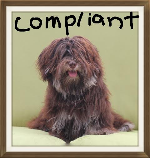 compliant