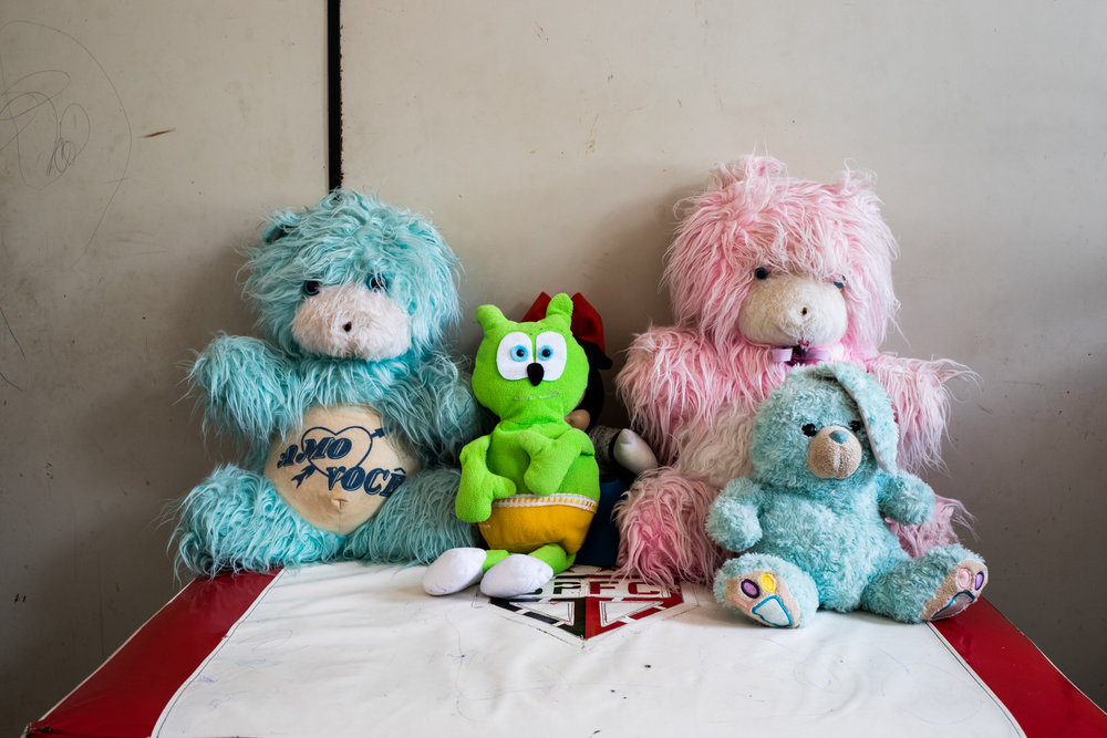 Teresa's soft-toy family.