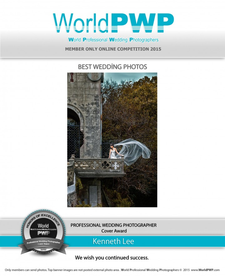 Professional Wedding Photographer Cover Award