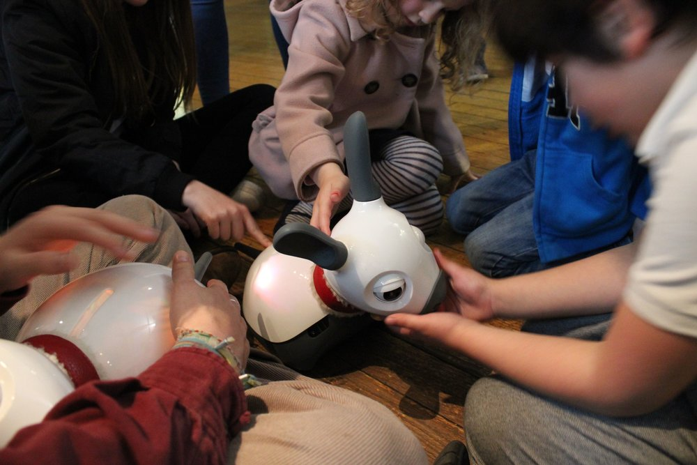 Children playing with Miro, the robotic dog
