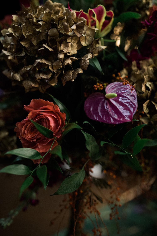 Alex-Sedgmond-Photography-Cardiff-Wales-Forbesfield-Florist-Cardiff-24.JPG