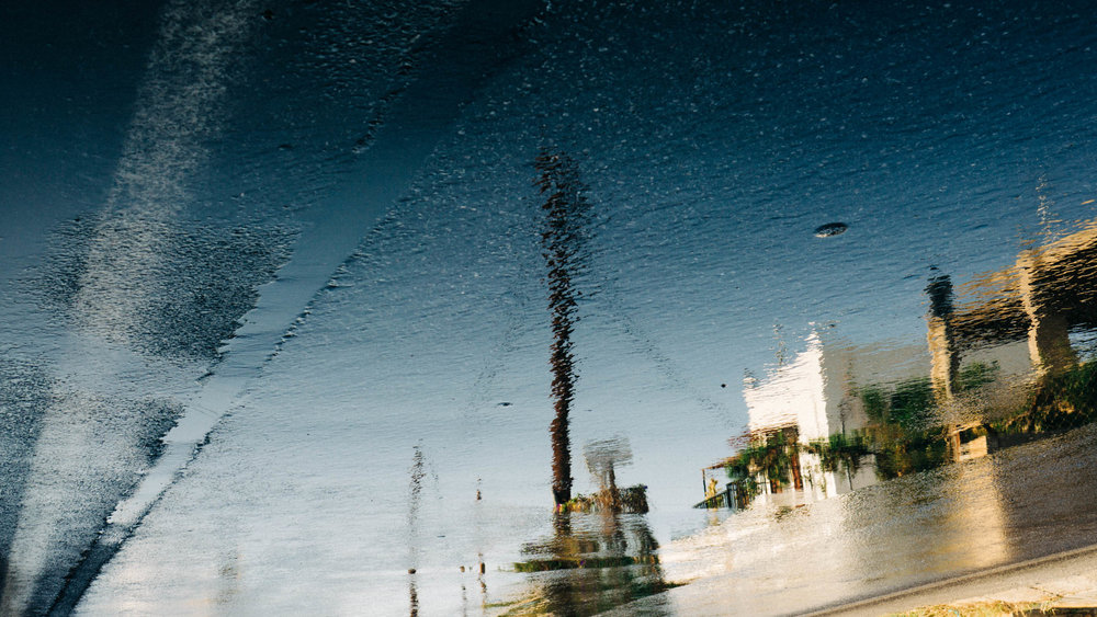 Alex_Sedgmond_Photography-Cardiff-SouthWales-15.jpg