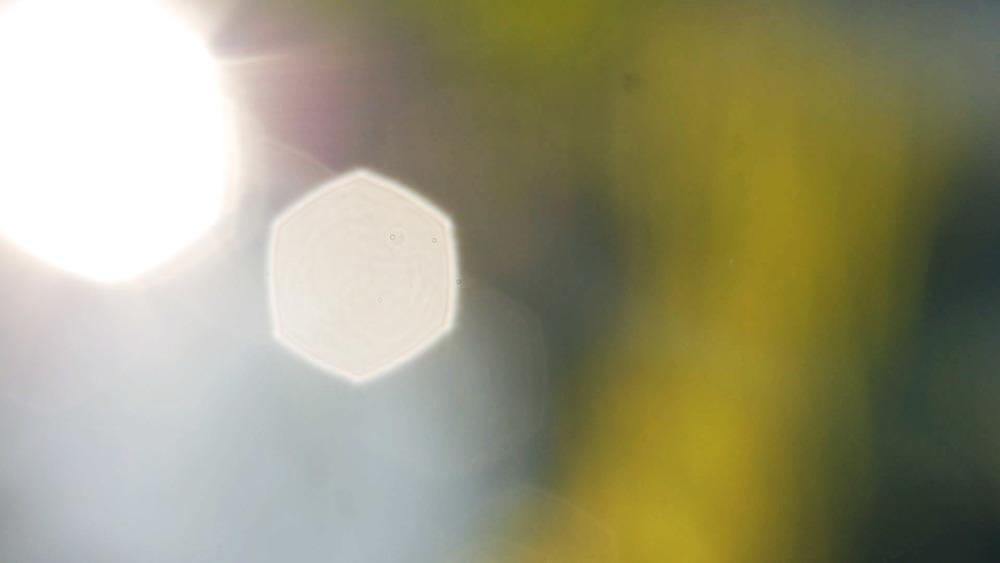glare2-edited.jpg