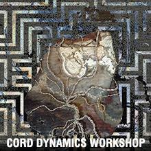 cord-dynamics-renee-hella.jpg
