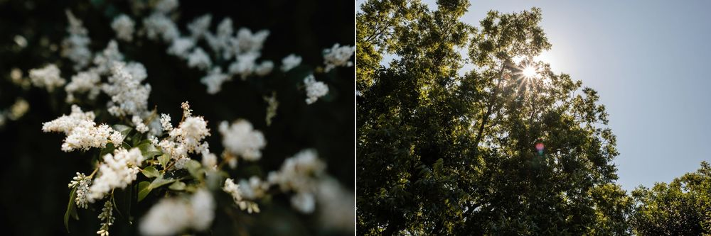 backyard-wedding-photos-greenville-lesley-aaron_0001.jpg