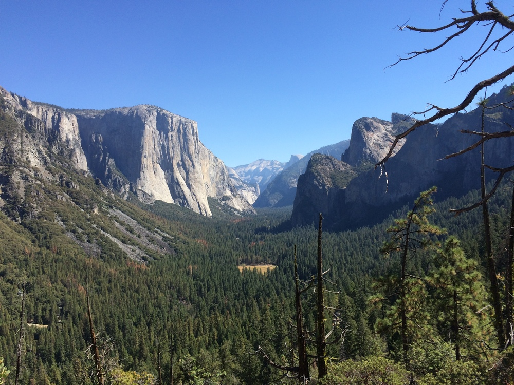 Hitchhiking through Yosemite