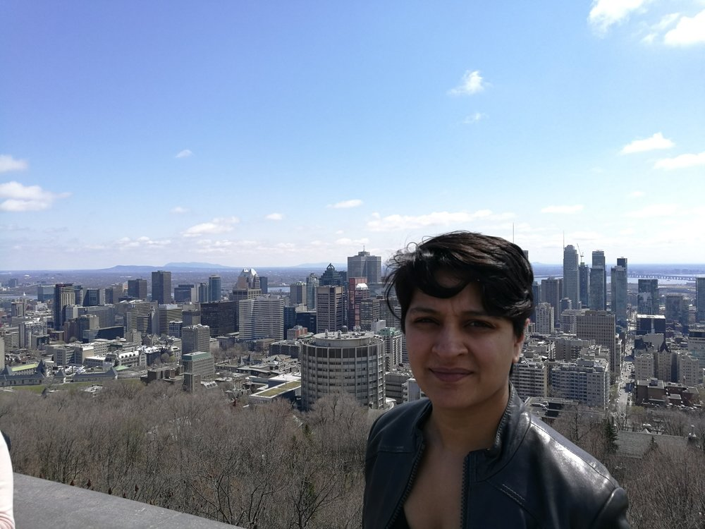 View from top of Mont Royal