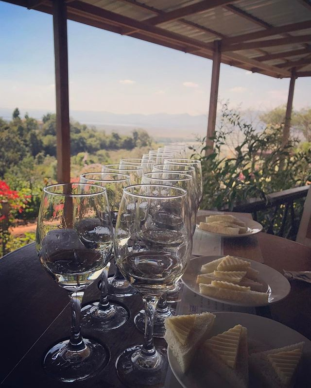 There is wine tasting all over the 🌎. Where have you gone wine tasting?