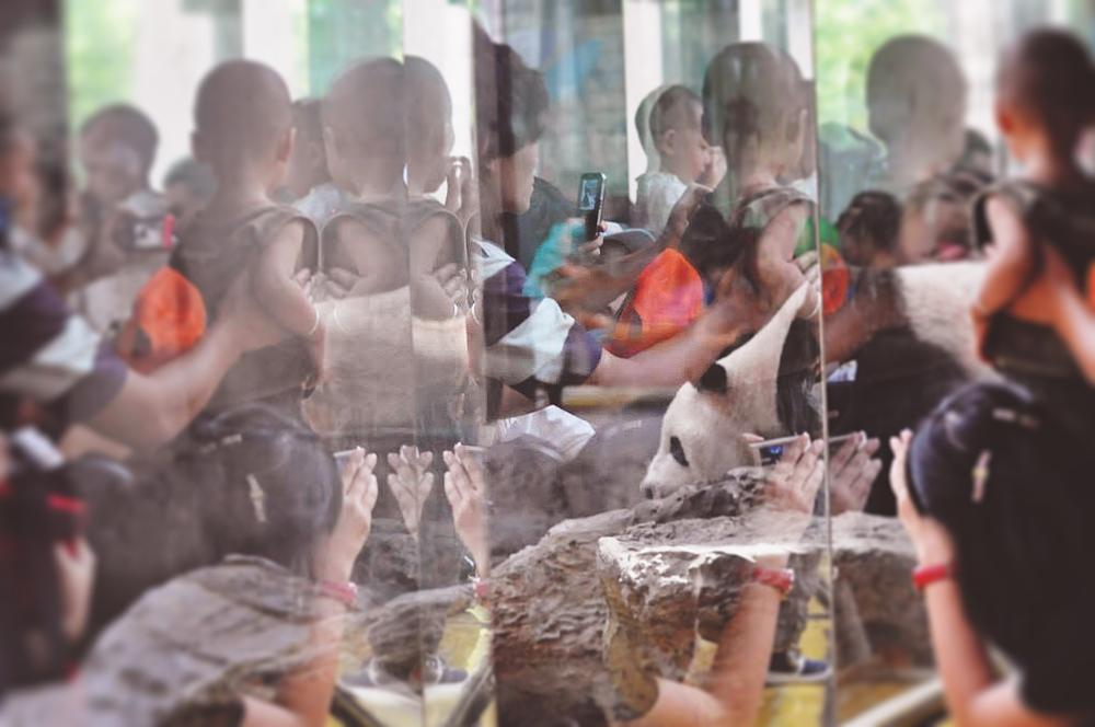 Image credit mine.Beijing 2010